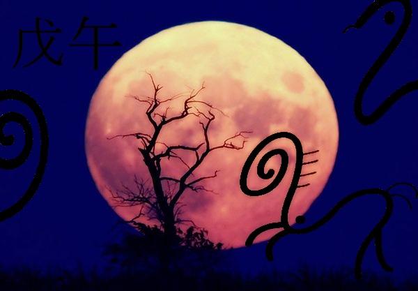 Horse´s full moon