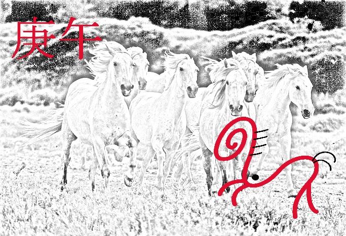 mes caballo